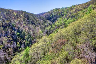 Mark Chandler - Cloudland Canyon (4)