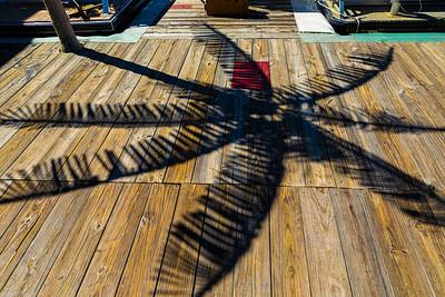 Rob Hale - Palm Tree Shadow 093020