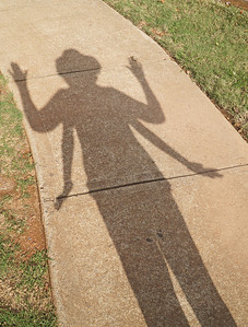 Shadow Fun