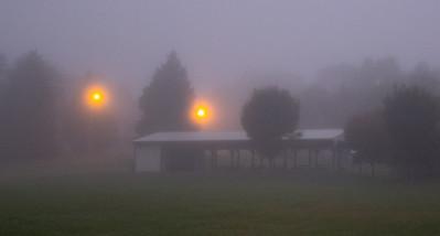 T Burr - Foggy Morn