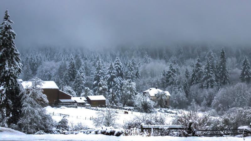 Cobble Hill Farm Winter