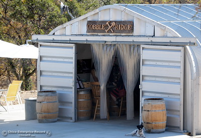A unique metal building located far from neighbors is the Cobble Ridge Distillery in Bangor, Calif. Thurs. Sept. 29, 2016. (Bill Husa -- Enterprise-Record)