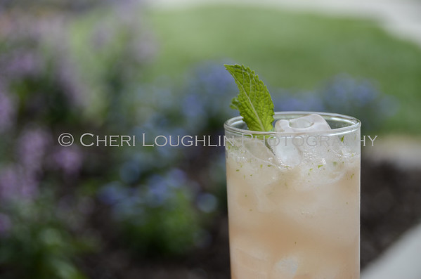 Shellback Rum Blood Orange - Basil Mojito 031 - Cocktail Development & Photography by Cheri Loughlin