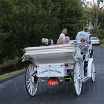 Carriage tours of the cemetery were featured.