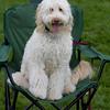 Weston TT at UMASS May 2011 - 0183