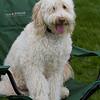 Weston TT at UMASS May 2011 - 0185