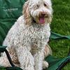 Weston TT at UMASS May 2011 - 0185_HDR