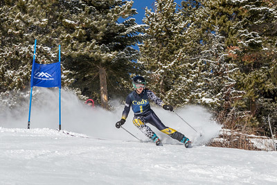 2018-02-10 Alpine Ski