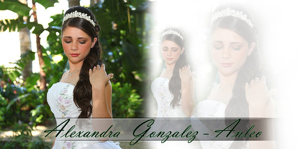 Alexandra Quince coffee table book