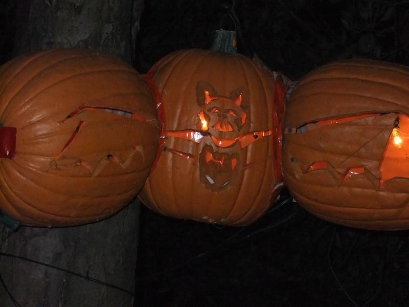 PumpkinBlazeOct2010 038.jpg