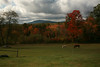 View of Mt. Monadnock From the House