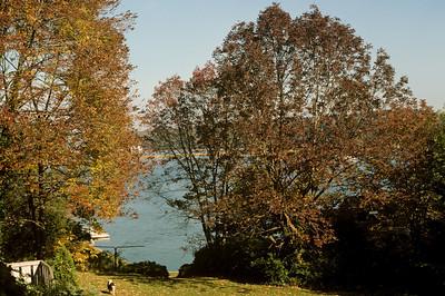 Cold_Spring_Harbor_LAB-cir-1990-127