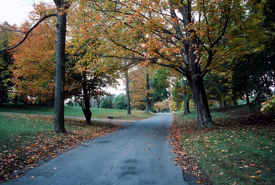Caumsett Park c012-1