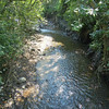 A Small River Runs Through The Pueblo