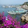 Manzanillo Is A Major Fishing Area Also