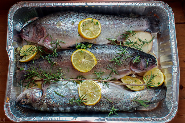 Silver trouts ready for the oven