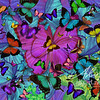 Butterfly Explosion Radial