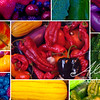 Color Collage Organic