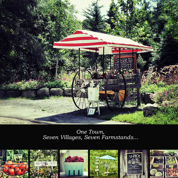 Farmstands of Barnstable