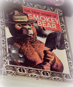 -SOLD- Vintage Smokey the Bear story (Box with handle)