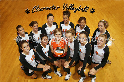 V Volleyball Team Pic 2010-11 logo
