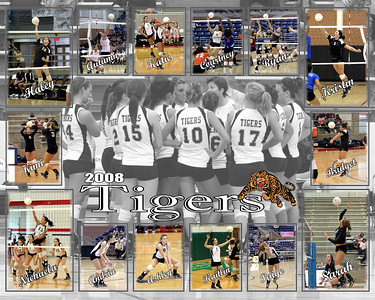 Lady Tigers collage1