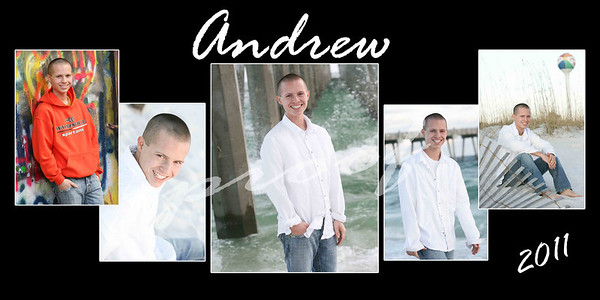 Andrew Collage proofs