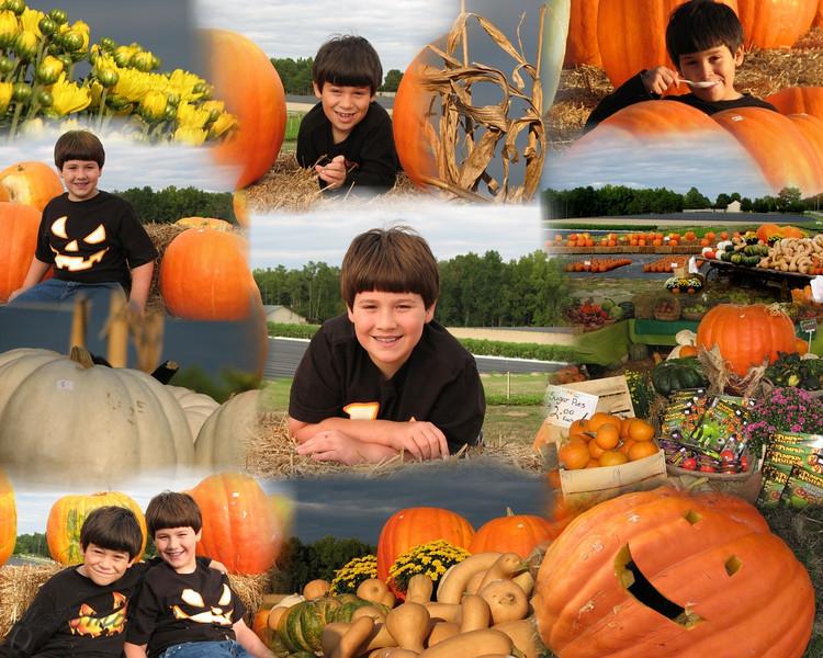 20111002PorterPumpkins#2