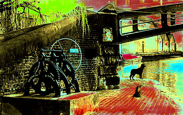 25 - 'A dog by  Camden Lock', 1989