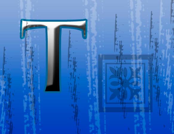 T- A Private Collage