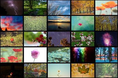 2013 Best Collage