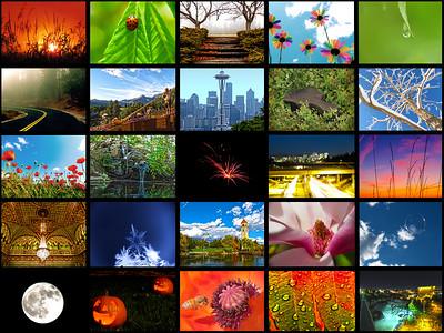 2011 Best Collage