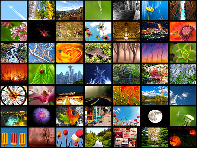 2011 Best Collage Extended