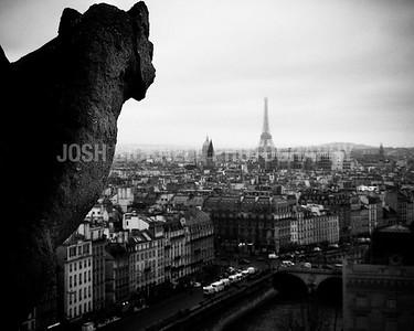 Parisian Gargoyle