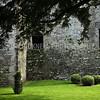 Castle Shrubs