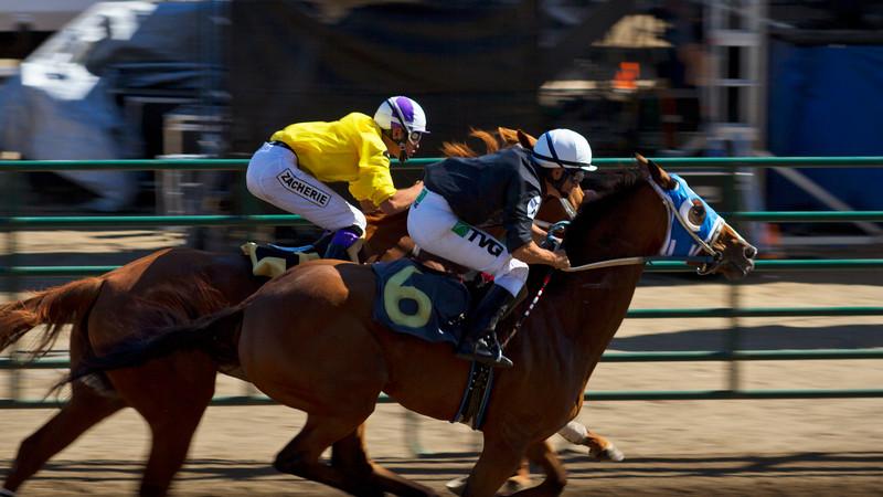 Horseracing at the Tillamook County Fair 2015