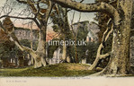 FGOS_01343, Edwardian postcard of Netley Abbey by FGO Stuart