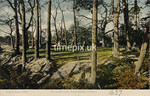 FGOS_01627,  Southampton Common by FGO Stuart