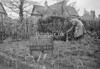 SJ819259A, Ordnance Survey Revision Point photograph in Greater Manchester