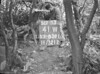 SJ839141W, Ordnance Survey Revision Point photograph in Greater Manchester