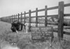 SJ839296A, Ordnance Survey Revision Point photograph in Greater Manchester