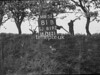 SJ819281B, Ordnance Survey Revision Point photograph in Greater Manchester