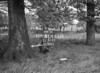 SJ819281A, Ordnance Survey Revision Point photograph in Greater Manchester