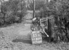 SJ839153A, Ordnance Survey Revision Point photograph in Greater Manchester