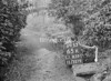SJ839165K, Ordnance Survey Revision Point photograph in Greater Manchester