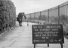 SJ839115B, Ordnance Survey Revision Point photograph in Greater Manchester
