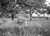 SJ819188B, Ordnance Survey Revision Point photograph in Greater Manchester