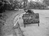 SJ829265C, Ordnance Survey Revision Point photograph in Greater Manchester