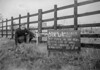SJ839287A, Ordnance Survey Revision Point photograph in Greater Manchester