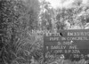 SJ839137L, Ordnance Survey Revision Point photograph in Greater Manchester